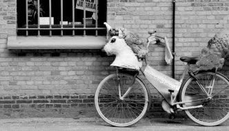 creative-business-unicorns-vs-workhorses
